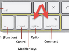 Option and Command